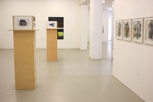 "Works by Katja Butt (on the left) in the exhibition ""Expanding Photography"". Photo of Meno Parkas gallery"