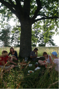 Lunch under an oak