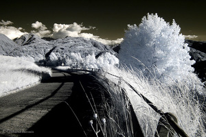 Gintaras Jaronis. From the series Travel fragments / Infrared photography. 2014-2015